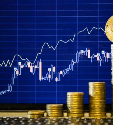 إدارة الاستثمار فى البورصات والأسواق المالية